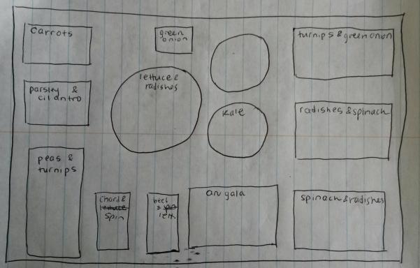 containerplan.jpg