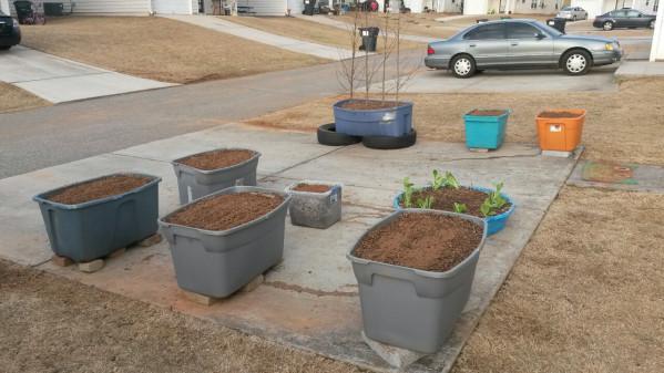 first container garden done.jpg